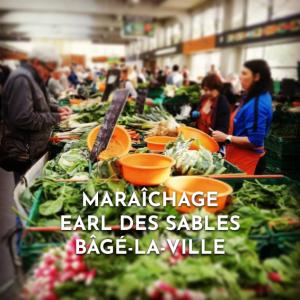 Site web_maraichage_janv2020
